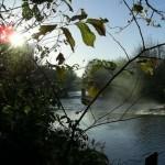 River_Kelvin