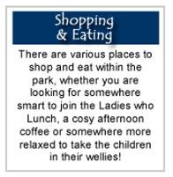 shopping_eating